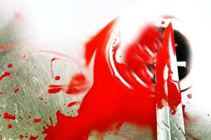 दोन सख्या भावांचा निर्घृण खून !